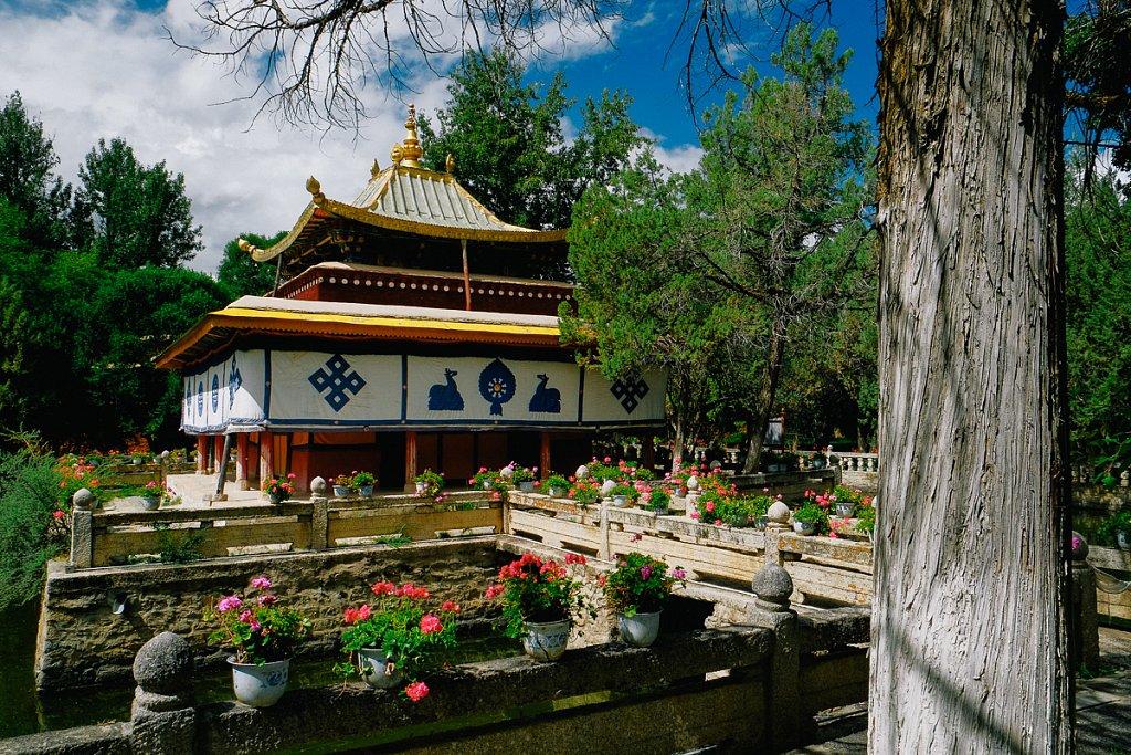 tibet-3.jpg